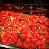 No-Fuss Summer Tomato Sauce