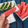 Watermelon Dippers with Honey Vanilla Yogurt Sauce
